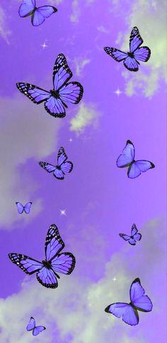 Purple butterfly edit