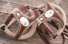 Stunning leather dog harnesses from master craftsman Denice Langley