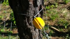 How to Install a Solar Electric Fence: If doing multiple lines, start at the top and work your way down. Read more on our website:  http://www.jandjacres.net/2013/07/20/expanding-the-electric-fence/