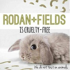 R+F is cruelty free! They don't test on animals & they don't put them in their products, either!