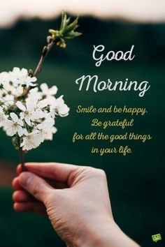 Whatsapp Images: Good Morning Pictures 2018 In Hindi Punjabi English Good Morning Cards, Good Morning Flowers, Good Morning Picture, Good Morning Love, Good Morning Sunshine, Good Morning Friends, Good Morning Greetings, Good Morning Wishes, Good Morning Images