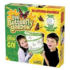 Insect Lore Live Butterfly Garden - 1 ea
