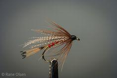 Ray Bergman - Kingfisher