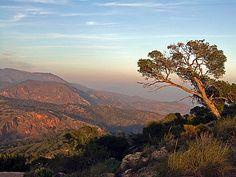 Vista de Sierra Espuña desde Santa Eulalía by Colin Hughes