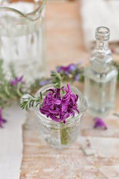 """syflove: """" hyacinths """""""