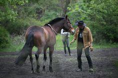 Dziękuje Herkules że byłeś  Dowiedz się więcej: http://westernhobby.pl/pomoc-dla-monsuna/