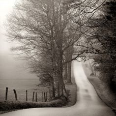 Cades Cove Loop by Nicholas Bell, Photograph | Zatista