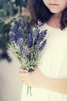 .. Lavender Ice Cream, Lavender Cottage, Provence Lavender, Lavender Garden, French Lavender, Lavender Blue, Lavender Fields, Lavender Flowers, Fresh Flowers