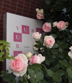 @YURI ecole de ballet contemporain