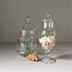 Apothecary Jars Vintage Glass Bathroom Storage Clear Glass Terrarium Containers Glass Jars With Lids Cloche Jars Bath Salt Storage Glass Jars With Lids, Jar Storage, Glass Bathroom, Salt Storage, Apothecary Jars, Amazing Bathrooms, Glass Terrarium Containers, Bathroom Storage, Glass Containers