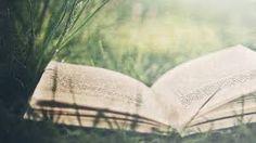 Open book on green grass-summer landscape wall. Elf Ranger, Book Background, Book Wallpaper, Summer Landscape, Dark Photography, Open Book, Dragon Age, Hd Photos, Digital Image