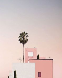 Pink Beach - My Jolie Candle Pink Beach Pink sunset. Pink Beach, Pink Sunset, Palm Tree Sunset, Palm Trees, Beaugrenelle Paris, Picture Wall, Photo Wall, Minimalist Photography, Summer Memories