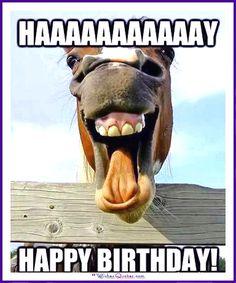 Funny Animal Birthday Meme: HAAAAAAAY! Happy Birthday!