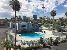 Best Hotels In Vegas, Bellagio Conservatory, Neon Museum, Boulder City, Fremont Street, Caesars Palace, Reef Aquarium, Las Vegas Strip, Paris Hotels