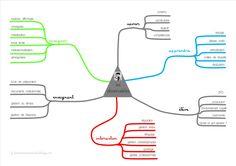 carte mentale des observables CAFIPEMF critique de séance