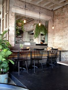 fern / plants / interior / coffee shop / cafe / restaurant / interior / black / raw brick / white beam