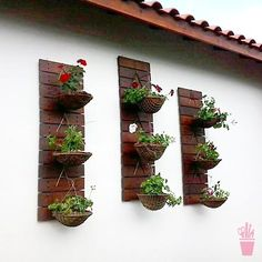 25 Trendy Ideas For Wall Hanging Plants Backyards House Plants Decor, Plant Decor, Decoration Plante, Flower Pots, Flowers, Terrace Garden, Hanging Plants, Garden Projects, Garden Ideas