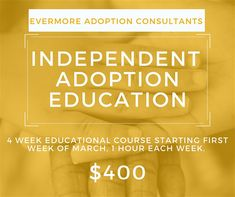Independent Adoption Education Course offered by Evermore Adoption Consultants Course Offering, Adoption, Education, Foster Care Adoption, Educational Illustrations, Learning, Onderwijs, Studying