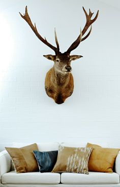 1803 deer leather cushions and a very regal stag. #deer #leather #cushions #artisan