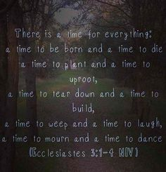 Ecclesiastes 3:1-4 Perhaps one of my favorite verses, it's all so true and it's meant for me and for you too.