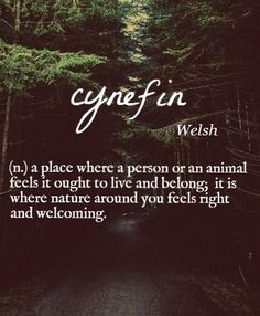 Cynefin [Welsh] ~ (n.) a place where a person or an animal feels it ought to live and belong; it is where nature around you feels right and welcoming.