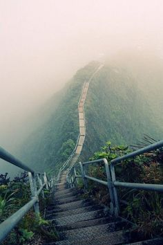 Haiku Stairs Oahu Hawaii  My tummy is getting knotted up and nervous just looking at the picture... Afraid of heights T.T
