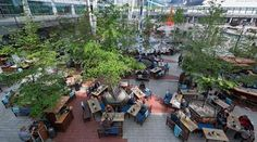 Layover in Munich? Hit the airport's beer garden | EuroCheapo