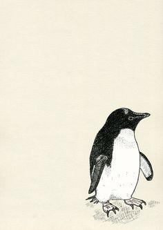 Adelie Penguin Art Print by Electric Egg - Illustration   Society6