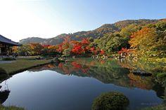 Autumn Tenryū-ji (天龍寺)
