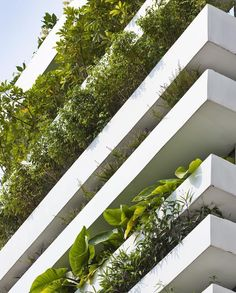 We vote for more green balconies by #VoTrongNghia! See here Stacking Green #HoChiMinhCity #Vietnam from our 100 GREEN BUILDINGS  Oki Hiroyuki by taschen