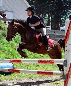 I rode English hunter-jumper for many years. Jumping was the best - it felt like flying!