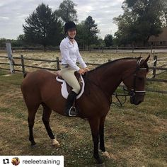 Don't miss out on adding this incredible #OTTB to your family! #Repost @reeleetraining  Chief Hellfire handled Fox Hunting 101 with Radnor Hunt like a seasoned pro. He stood quietly for the lectures from the hunt master handled the large group with ease and did not even bat an eye when the hounds came right through his legs! If you're looking for a Hunt Horse to turn heads this season look no further. Price reduced to $8500 for a quick sale. Don't miss out on this awesome gelding. Click the…