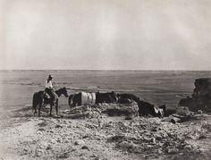 1908 52 Vintage Western Cowboys Horse Landscape 11x14 Photo Art Erwin E Smith | eBay