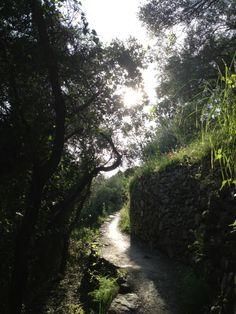 Sentiero n°2, Vernazza-Corniglia