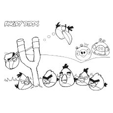 Angry Birds And The Slingshot Coloring Pages Bird Coloring Pages