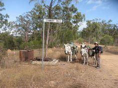 Courtesy: Wilderness Expeditions, Kalunga Herberton Qld (Australia).