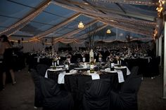 The gorgeous Rooney's tent lights up. Tent Lighting, Wolves, Light Up, Celebration, Album, Wolf