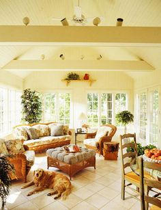 Bright, comfortable sunroom with peaked ceiling and beams. (Bonus cute dog.)