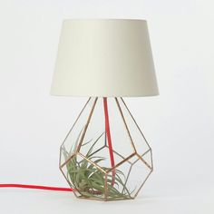 Copper prism lamp that takes a tilandsia in the base. From Terrain