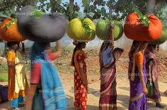 Tea pickers in Sylhet Region, near Srimangal, in Bangladesh.