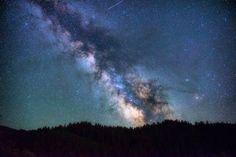 Photo By Christian Nielsen   Unsplash   #scienceisfun #scienceiscool #scienceclass #sciencenerd #sciencerocks