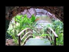 World Famous Belize Botanical Gardens