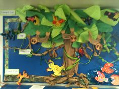 Rain Forest Bulletin Boards: I would have my students conduct a short research project about one animal that lives in the rainforest. Afterwards they would use a varitey of materials to re-create their animal. We would display the animal and the facts. Rainforest Classroom, Rainforest Project, Rainforest Theme, Amazon Rainforest, Rainforest Crafts, School Displays, Classroom Displays, Classroom Themes, Preschool Classroom