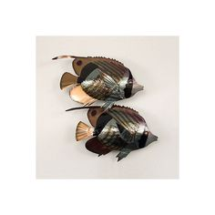 Striped Butterfly Fish Double ($199) ❤ liked on Polyvore featuring home, outdoors, outdoor decor, outdoor enhancements, outdoor wall decor, outside garden decor, butterfly garden decor, outdoor patio decor and outdoor garden decor