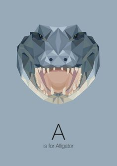 animal-alphabet-por-linn-maria-jensen-18