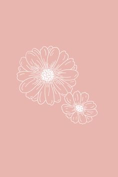Daisies Floral Illustration - The Language of Flowers - Bea & Bloom Iphone Wallpaper Vsco, Iphone Background Wallpaper, Pastel Wallpaper, Aesthetic Iphone Wallpaper, Flower Wallpaper, Aesthetic Wallpapers, Daisy Background, Botanical Line Drawing, Floral Drawing