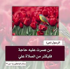 احاديث النبي الأعظم و اهل البيت عليهم السلام  اللهم صل على محمد وال محمد