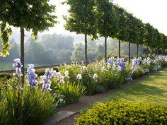garden designs by Jinny Blom