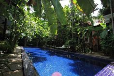 Recommended destinations for you in Angkor Wat - siem reap - Cambodia @ www.petitvilla.com  Hurry up, these offers only last 24 hours