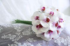 Sweet Orquidea by aloe